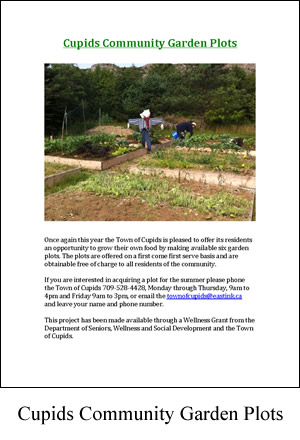 Cupids Community Garden Plots Ad2